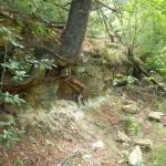 Kickapoo Valley Reserve, Driftless Area, Vernon County